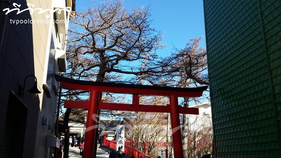 หนาวนี้ที่ญี่ปุ่น