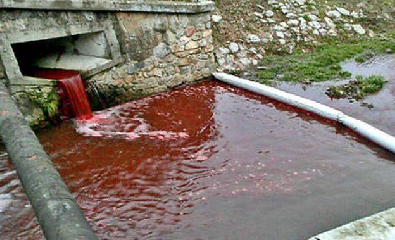 ตะลึง!! แม่น้ำกลายเป็นสีเลือด