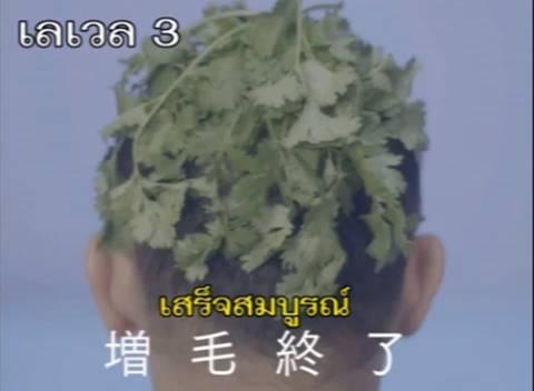 """""""ชาเขียว"""" หลบไป """"ผักชี"""" มาแทน ตอนนี้ญี่ปุ่นกำลังบ้า """"ผักชี"""" หนักมาก!! ถึงขั้นเอาไปทำเป็นMV (ชมคลิป)"""