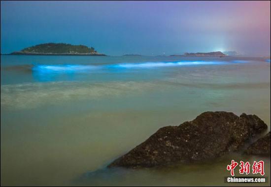 """""""หาดเรืองเเสงสีน้ำเงิน"""" ปรากฏการณ์ธรรมชาติเเสนสวยที่จีน!!!"""