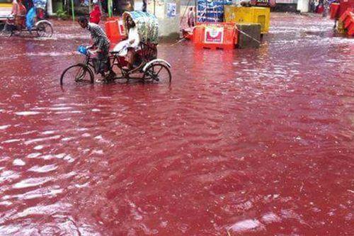 """ชวนขนลุก!!! """"เปิดภาพเทศกาลเชือดสัตว์ใหญ่ ผสมกับฝนตก"""" จนกลายเป็นเเม่น้ำสายเลือดที่บังคลาเทศ!!!"""