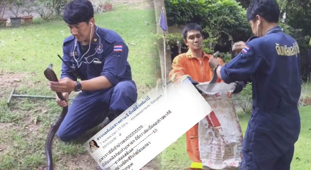 สุดยอด!!!! หนุ่มกู้ภัยโชว์วิชาเซียนจับงูเห่าด้วยมือเปล่า….ที่ใครเห็นก็ต่างต้องทึ่ง!!!