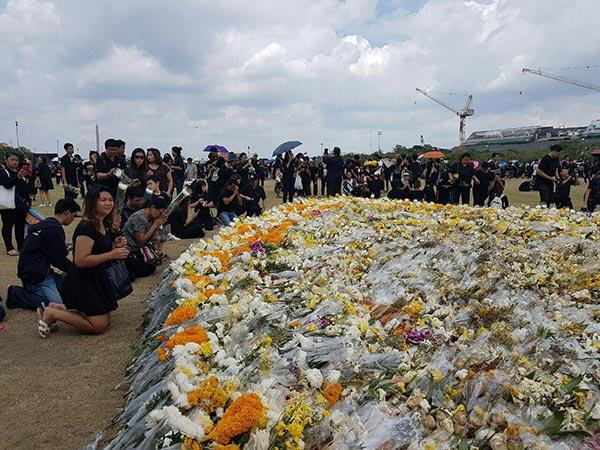 ประชาชนไม่ต้องห่วง ดอกไม้บริเวณรอบรั้วพระบรมมหาราชวัง ยังเก็บไว้อย่างดี