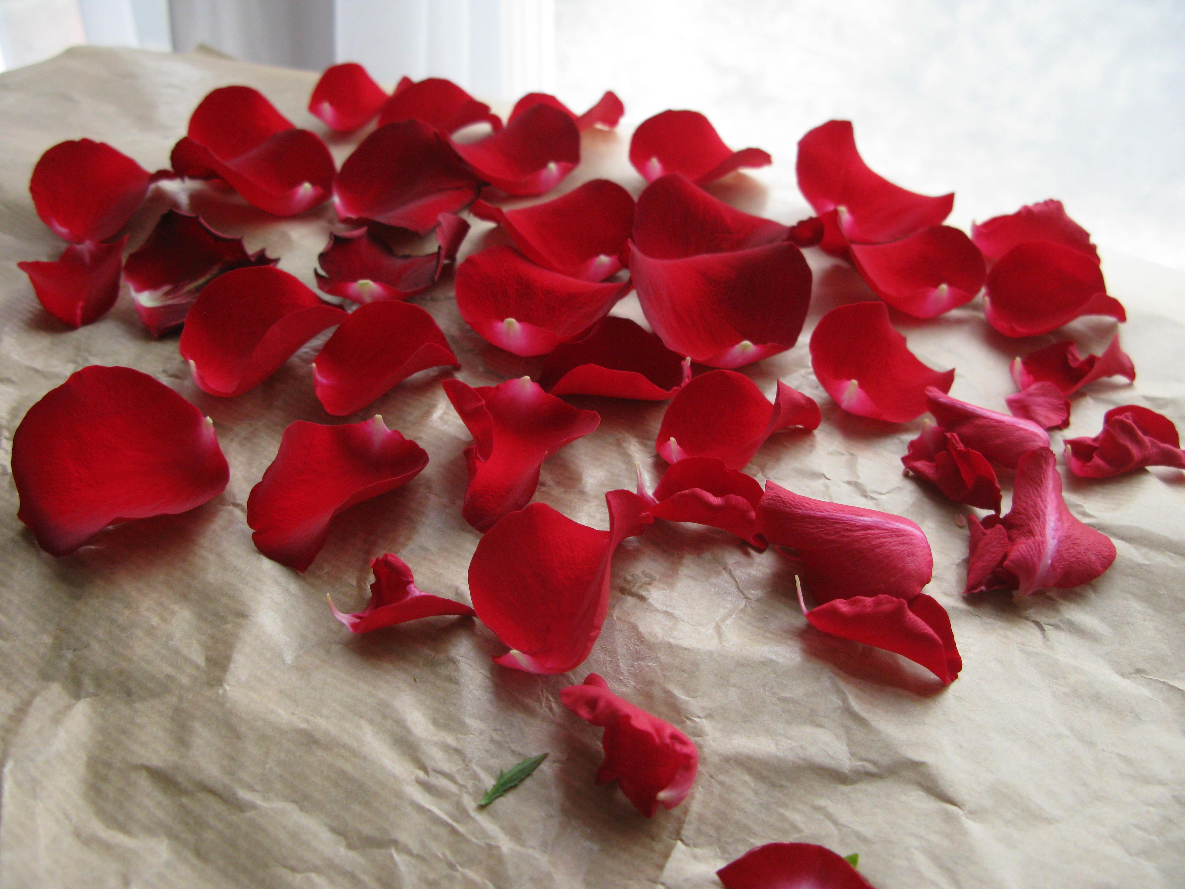 К чему снится картинка розы
