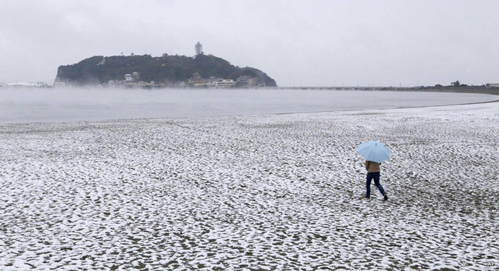 """ตะลึง!!! """"หิมะตกกลางกรุงโตเกียว"""" ในช่วงเดือนพฤศจิกายน เป็นครั้งแรกในรอบ 54 ปี!!!"""
