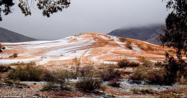 """ตะลึง!!! พบหิมะตกกลาง """"ทะเลทรายซาฮารา"""" ครั้งแรกในรอบ 37 ปี!!!"""