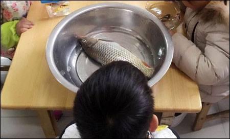 """เมื่อหนูน้อย """"นำปลาไปที่โรงเรียนตามที่คุณครูบอก"""" อ้าวเฮ้ย… ไม่เหมือนที่คุยกันไว้นี่หน่า!!!"""