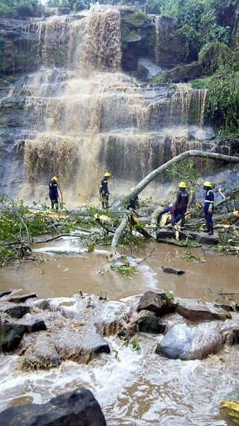 """สลด!!! """"ต้นไม้ใหญ่โค่น"""" ล้มทับนักเรียนที่กำลังเล่นน้ำตก ในประเทศกานา เสียชีวิต 18 ราย!!!"""