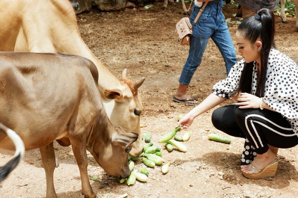 หญิง ธิติกานต์ บุกวัดป่าฯ ขนผักเต็มสิบล้อเลี้ยงสัตว์กว่าพันชีวิต