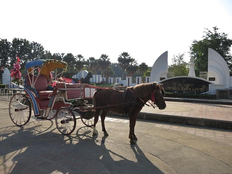 เที่ยวทั่วเมืองกับรถม้าลำปาง