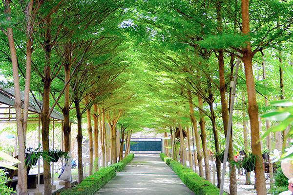 สวนนกยูงสามพราน นครปฐม