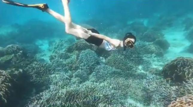 เริงร่าใต้ท้องทะเล แต้ว ณฐพร โชว์หุ่นสวยดำน้ำสุดพลิ้ว (ชมคลิป)
