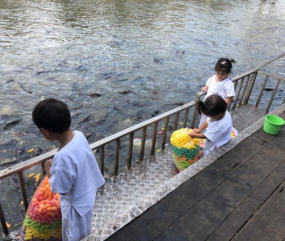 กาย ฮารุ เจอดราม่าหลังพาลูกๆเข้าวัดให้อาหารปลา