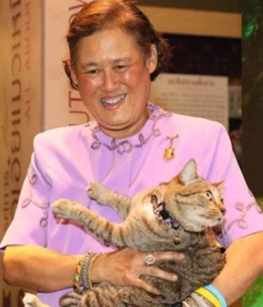 กรมสมเด็จพระเทพฯ กับ คุณใบตอง น้องแมวทรงเลี้ยง